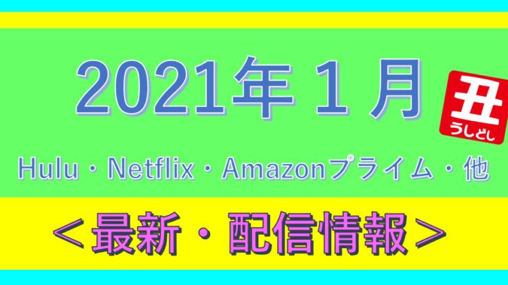 2021年1月*海外ドラマ配信予定.Netflix.Hulu.プライムビデオ.他